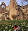 Melrose Abbey.jpg