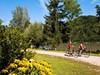 Danube Path
